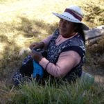 En gardant les brebis à Maras, vallée sacrée...