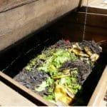 et se sert des autres déchets pour fabriquer du compost, aucun engrais chimique n'est utilisé.