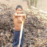 et afin de permettre aux enfants de mesurer la réalité du travail agricole.