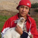 CIMA permet aux enfants de participer à l'élevage